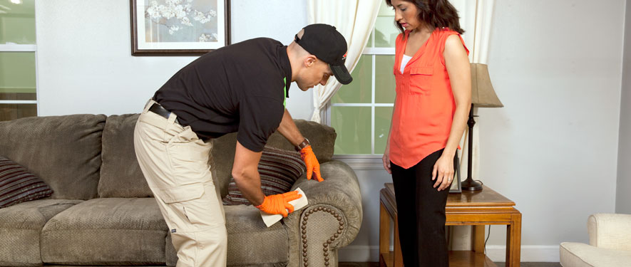Winston Salem, NC carpet upholstery cleaning